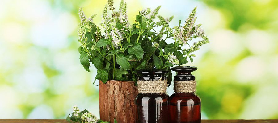 Why Choose Organic Skincare Products?